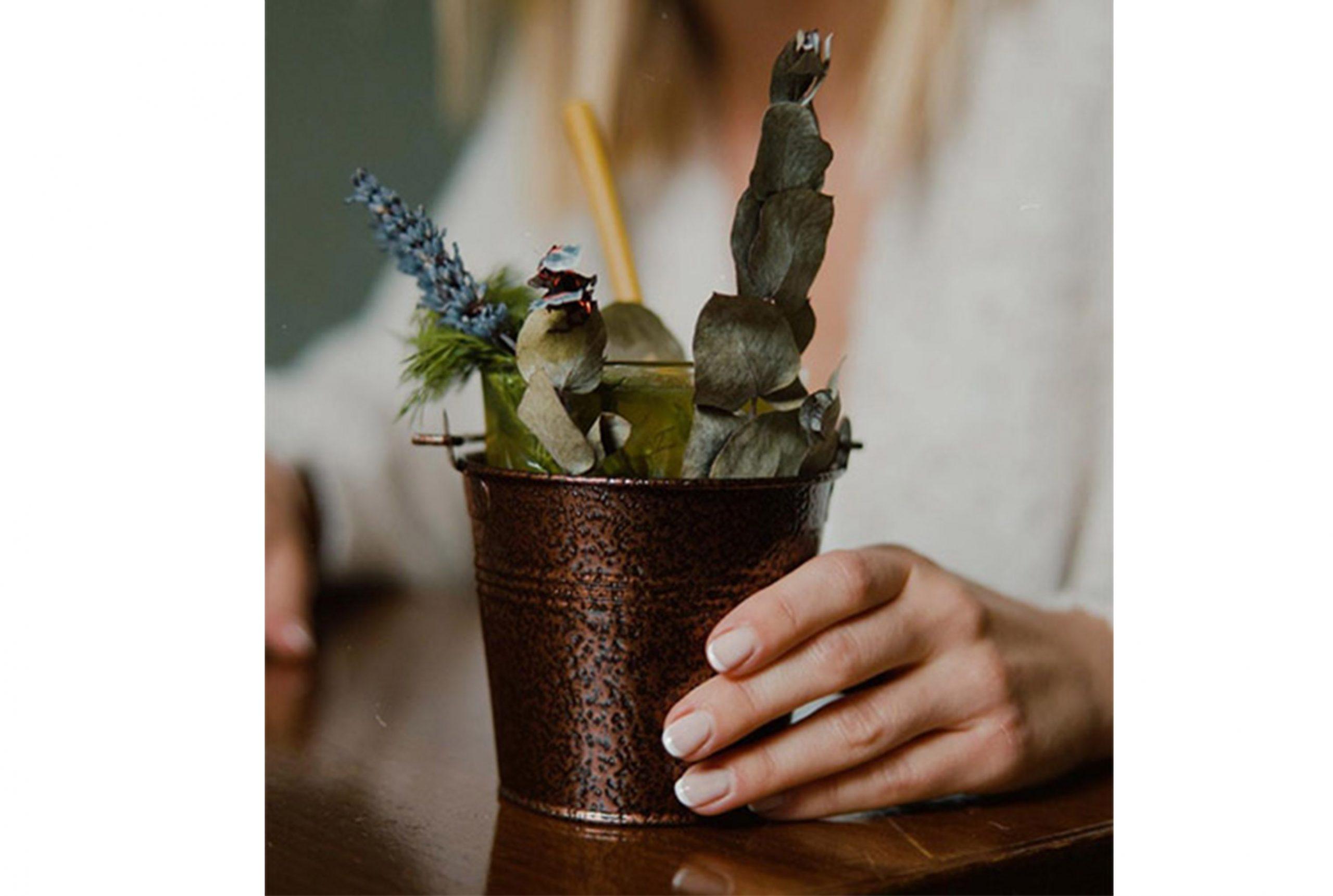 Coctel de la suegra del jardinero, diseño retail eco friendly